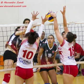 My Volley -Pro Volley-204